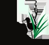 NZ Wetland Trust